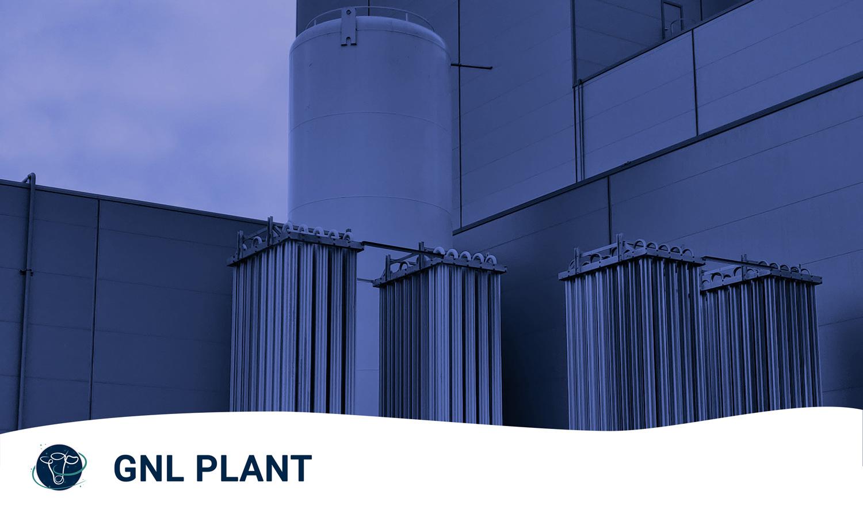 IMG GNL Plant